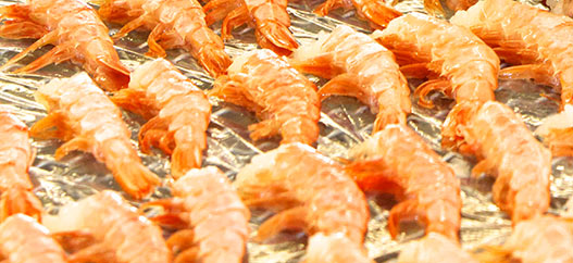 products-international-shrimp